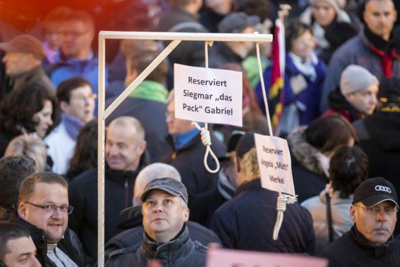 Dresdenis tõid meeleavaldajad tänavale sümboolse võllapuu