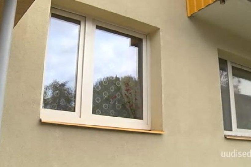 TV3 VIDEO   JÄLLE MASENDAV LOOMALUGU! Koer jäeti kaheks aastaks üksi mahajäetud korterisse