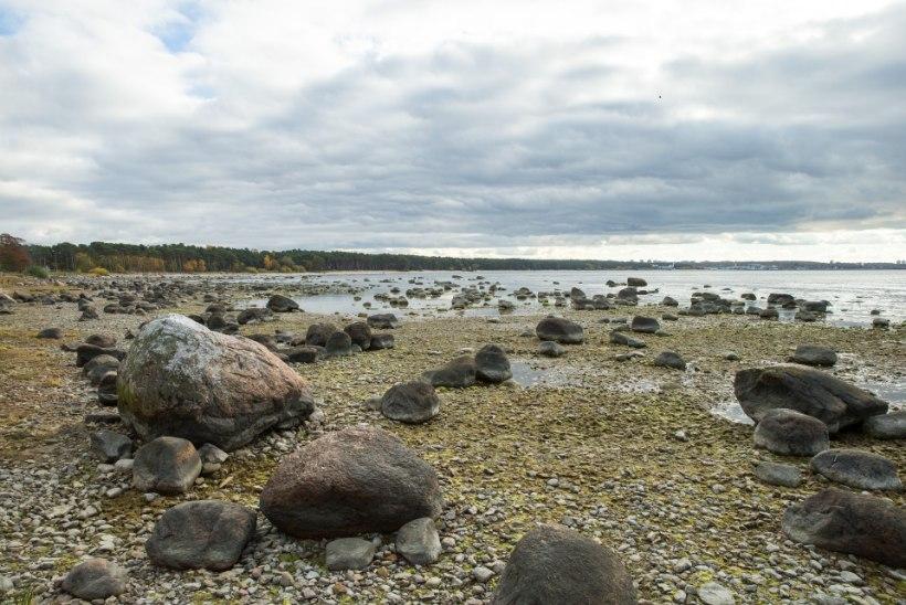 ERAKORDNE? Miks on jõgede-järvede veetase nii madal ja meri mõõnab?