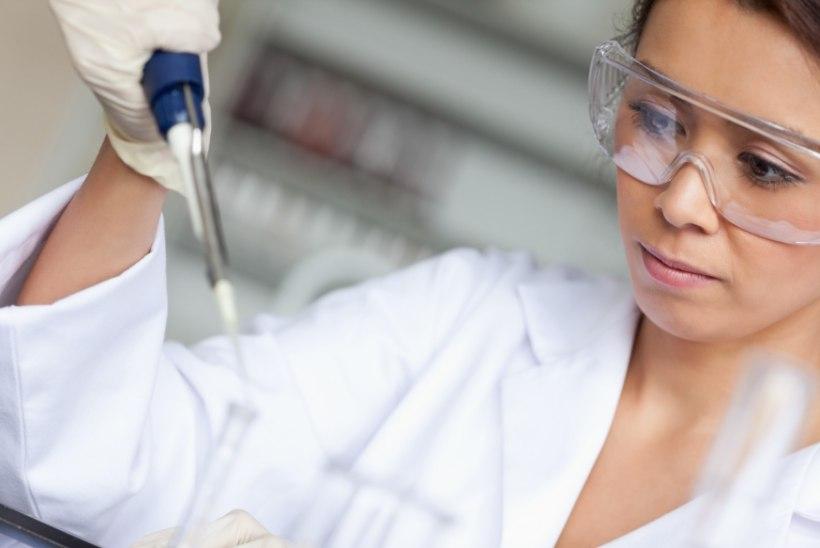 Probiootilised bakterid parandavad mälu