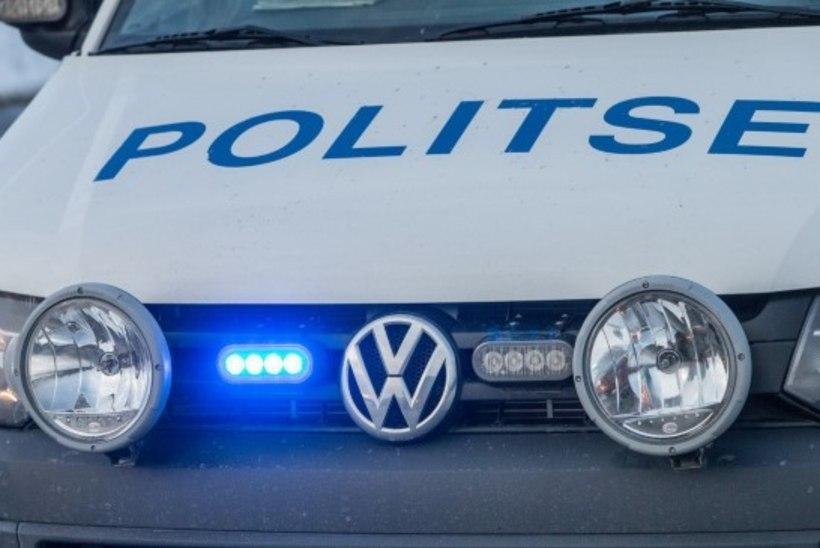 Eesti ja Soome politsei kontrollivad sadamas autojuhtide kainust ja reisijate dokumente
