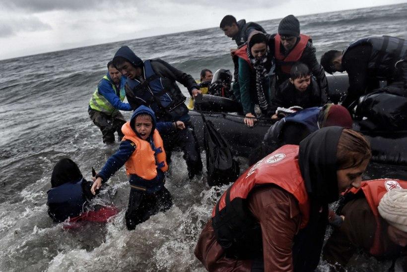 Tšehhi riigipea: enamik põgenikke ei vääri kaastunnet!