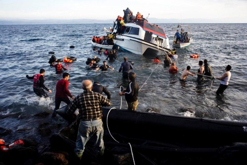 PAGULASKRIIS: Kreeka ranniku lähedal uppus paarkümmend paadipõgenikku, suur osa neist olid lapsed
