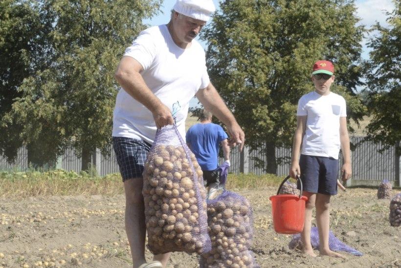 Valgevene president Lukašenka kasvatab pojast endale järeltulijat