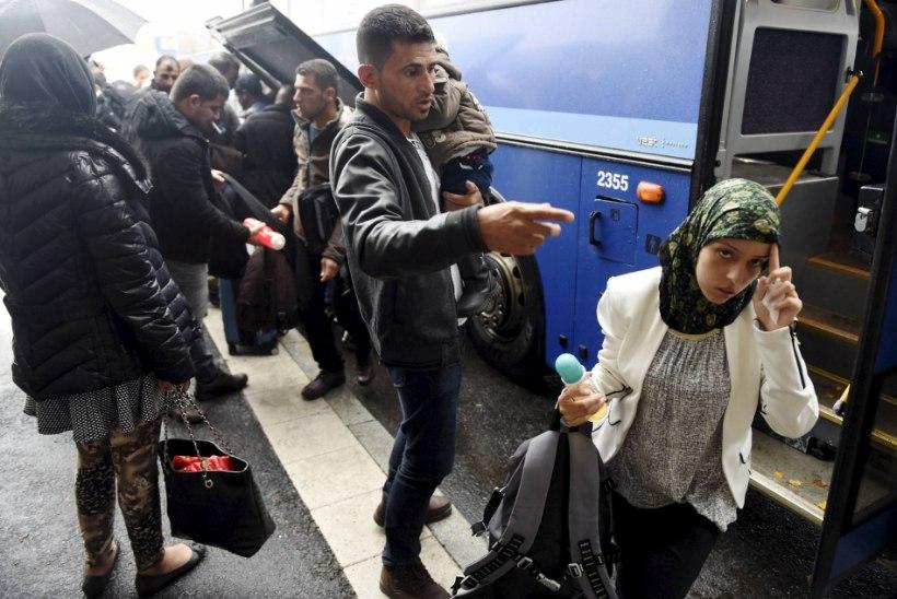 UURING: 87 protsenti soomlastest tahab karmistada pagulastele kaitse andmise tingimusi