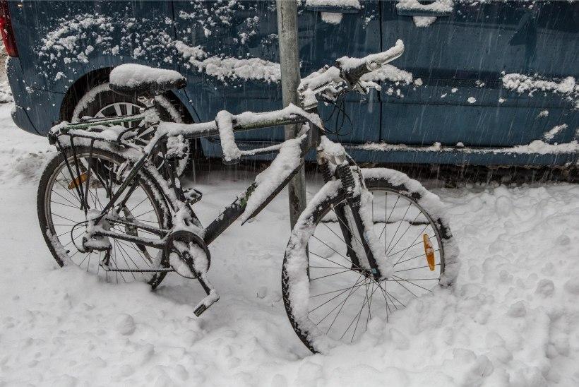 Ilmateenistus: kadripäevaks võib külmaks minna
