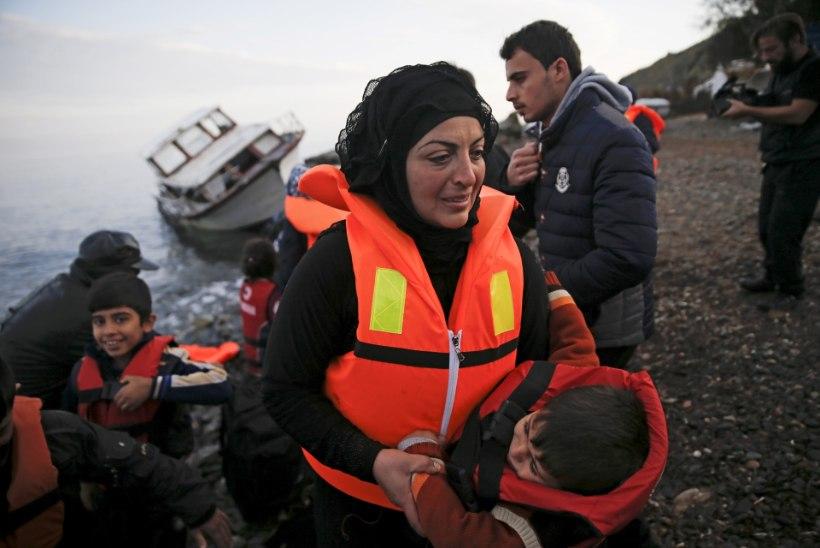 Oxfordi professor: pagulased tuleks tagasi saata pagulaslaagritesse