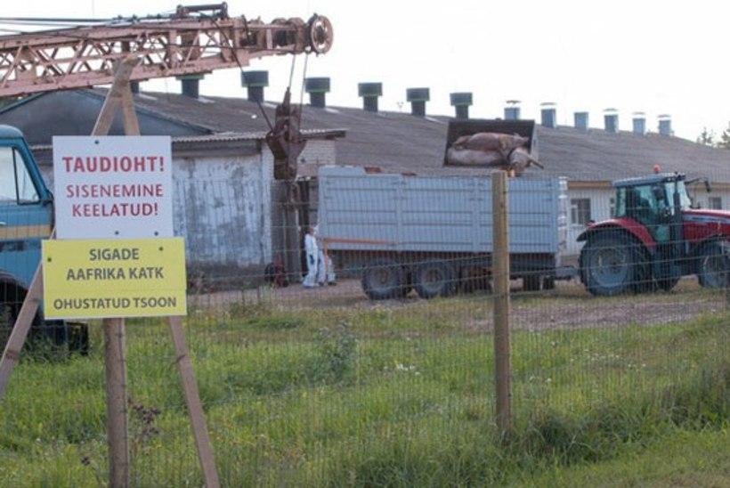 Nukikese seafarm vabastati katkukarantiinist