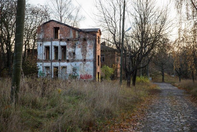 Kopli liinide viimane elanik andis Tallinna linna kohtusse: tema väljatõstmine võib olla ebaseaduslik