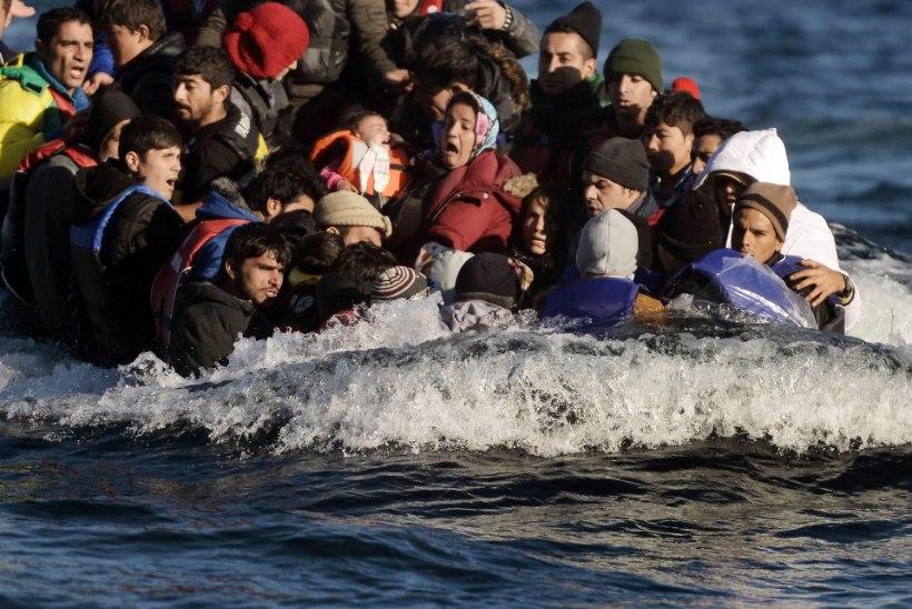 218394 pagulast ühe kuuga