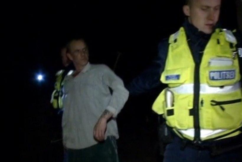 """""""REPORTERI"""" VIDEO   """"Lauda-Meelis"""" põgenes politsei eest lehmade juurde"""