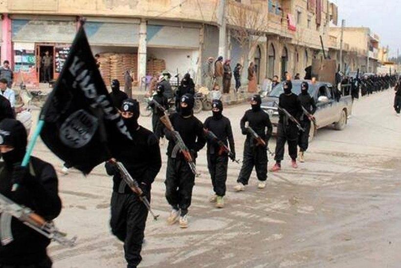 Terrorirühmitus Islamiriik = kindralid, röövlid, võõrsõdalased