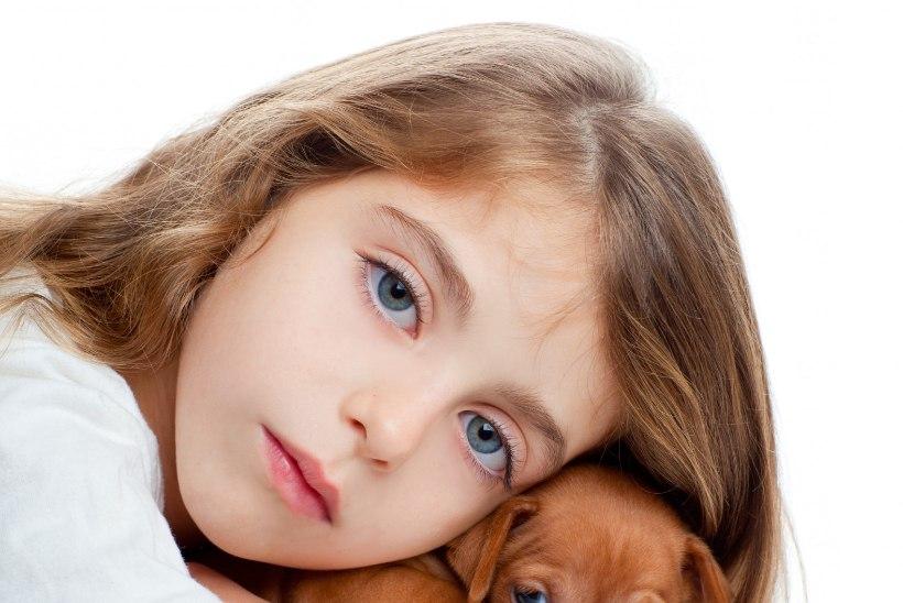 Mida teha, kui lemmikloom teeb haigeks?