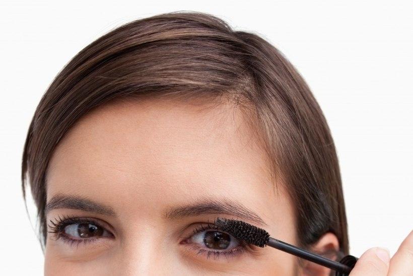 c0a3914f944 Üks küsimus: miks silmad ei talu ripsmetušši? | Tervis