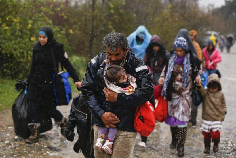 Põhimõtted lendavad nurka: vaja on osta Türgi