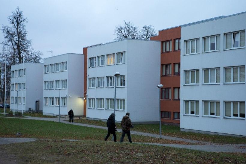 Viinauimas pussitamine Viljandi õpilaskodus – miks oli alaealistel keelatud esemeid?