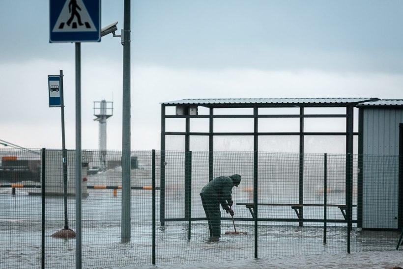 VÄIKE, AGA TIGE: novembritorm Gorm sügise selgroogu ei murdnud