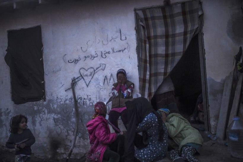 PAGULASTE ÜÜRILIMIIT KASVAB VEELGI: kuni 3393 eurot kuus elamipinna üürimiseks 4-liikmelisele pagulasperele