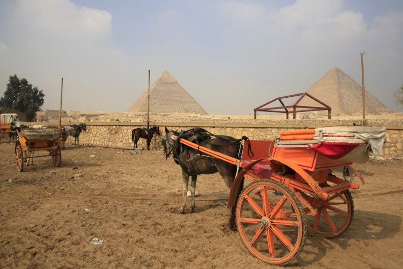 HÜLJATUD KUMMITUSLINN: vaata, kuidas peatatud lennud on tühjendanud Sharm el Sheikhi turistidest