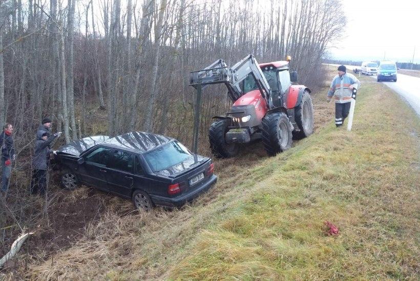 Volvo kihutas vastu puud