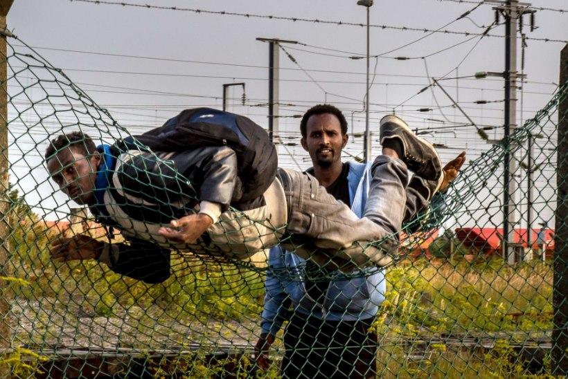 Jüri Lina: pagulaskriis on ettekavatsetud kuritegu!