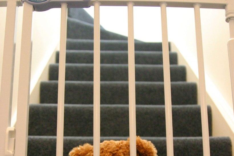 Kas lasteaiad hakkavad mudilaste kaisuloomi ukse taha jätma?
