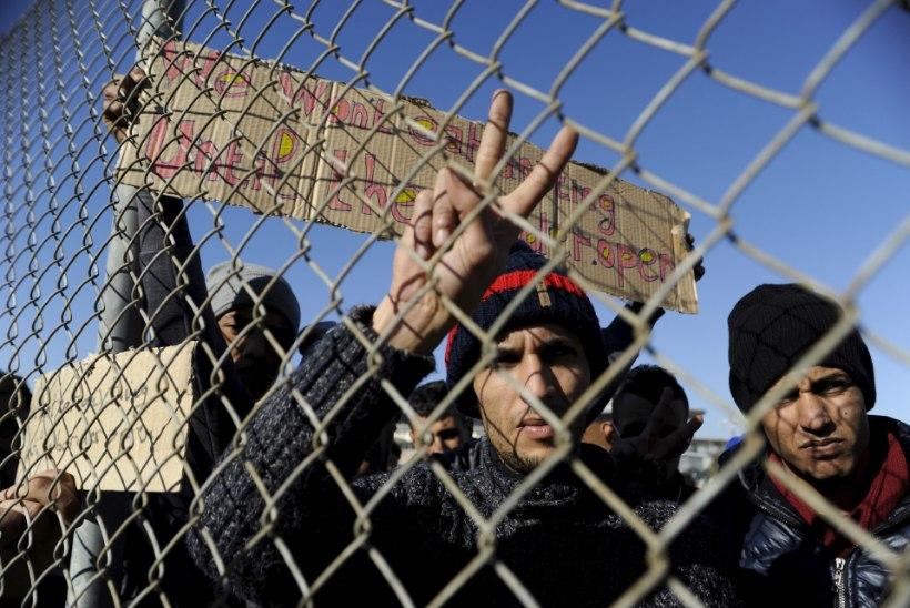 Illegaalide uus rännutee läheb Albaania kaudu