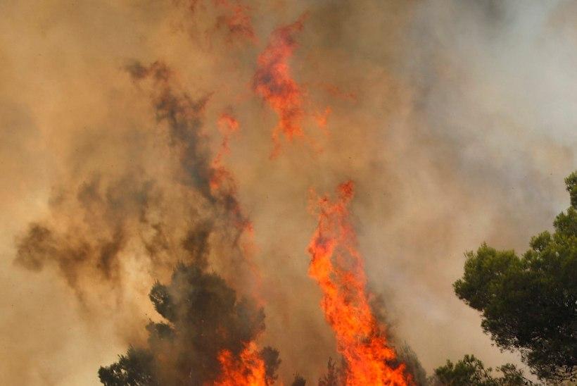 Elu võimalikkusest Maal ehk muutuv kliima põletab, ujutab ja kuivatab kontinente