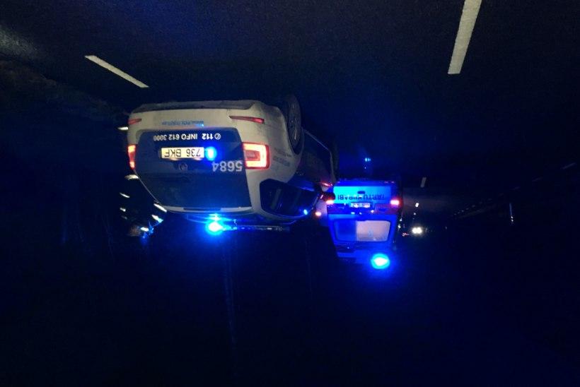 GALERII: Maanteele jooksnud põder põhjustas liiklusõnnetuse