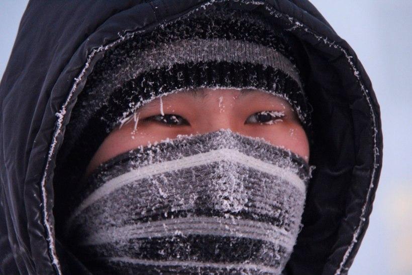 VIDEO | Eestis on viis kraadi külma, kuid samal ajal Jakuutias ...