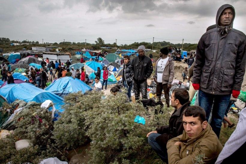 Europol nabis kinni 23 migrandivedajat, võrgustik on teeninud 10 miljonit eurot