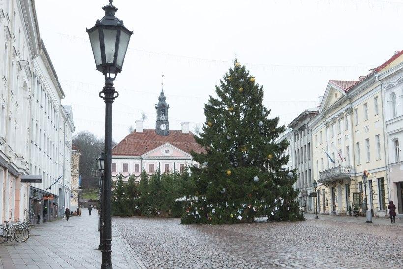 GALERII | Jõuluootus. Salasoovid Tartu jõulukuusel: iPhone, korter, lumine talv