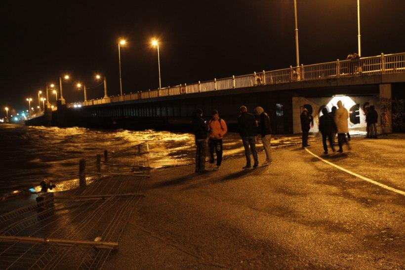 GALERII   Pärnus on merevee tase ületanud kriitilise piiri
