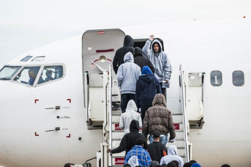 Üha rohkem iraaklasi kipub Soomest koju