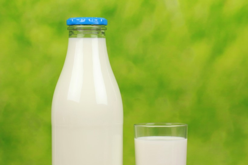 Mis on piimast tehtud parimad palad?