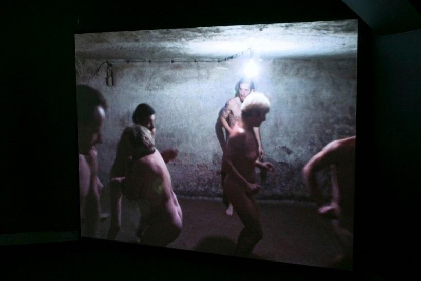 Holokausti näituse kuraator: me ei näita ajaloolist tõde, vaid kunsti