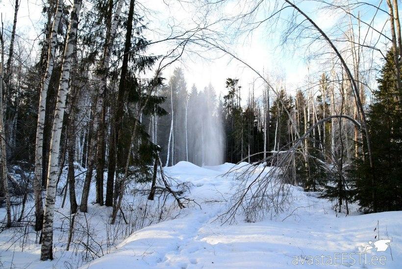 Avasta Eestimaad: vabariigi aastapäeval tasub avastada Ida-Viru nõiduslikke paiku