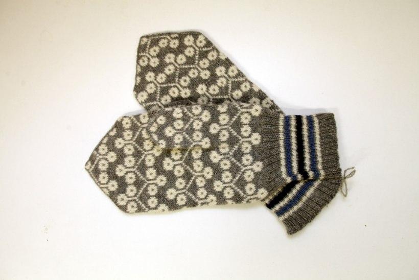 Milline talvine riietusese on suurim pisikute edasikandja?