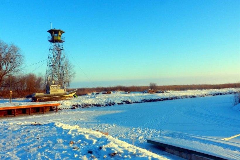 Ida prefektuur kehtestab jääle mineku piirangu
