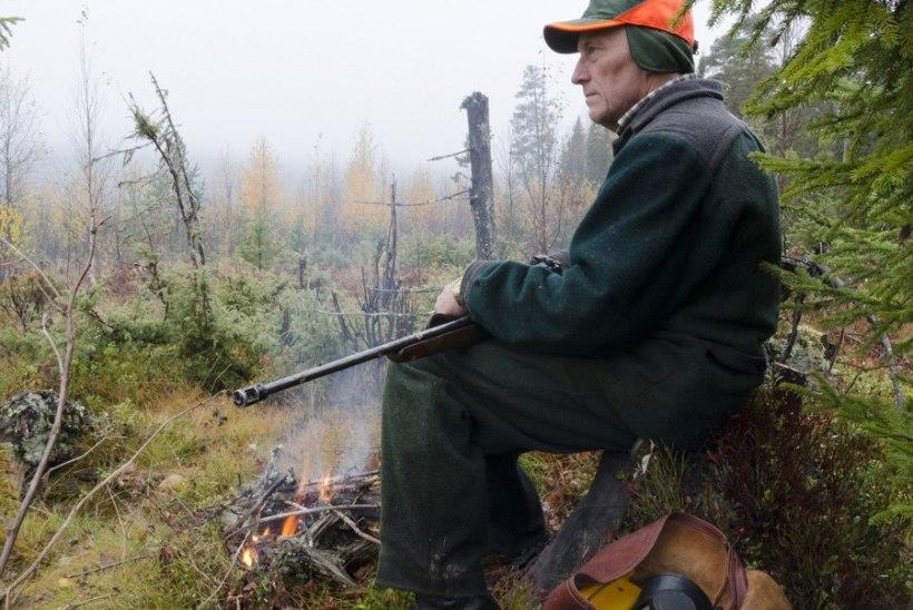 Jahimehed saavad katkutõbiste metssigade eest matusetasu