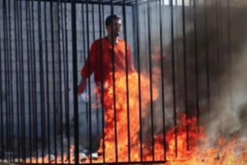 Elusalt põletatud piloodi isa nõuab karmi kättemaksu