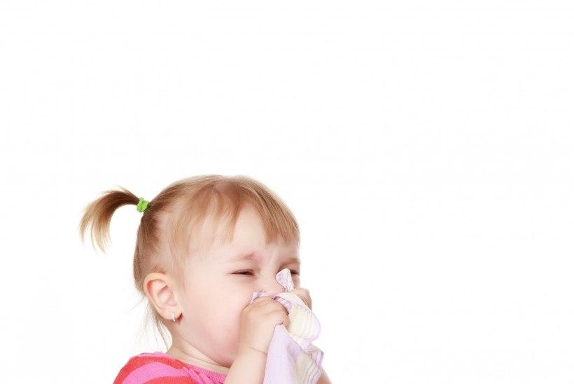 GRIPP VALLUTAB EESTIT: haigestumine kasvas eelmisel nädalal poole võrra