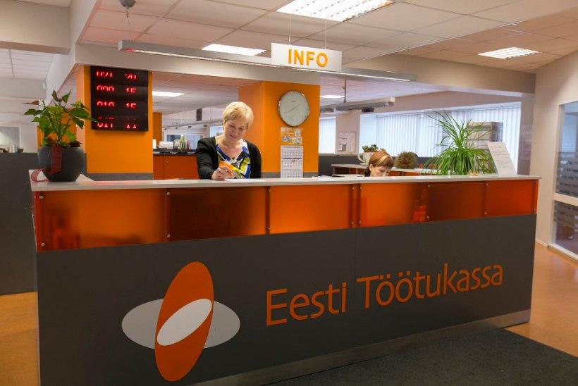 Veebruari seisuga oli töötukassas töötuna arvel 30 919 inimest