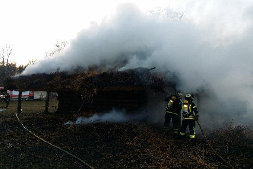 Vabaõhumuuseumi eksponaadil põles rookatus