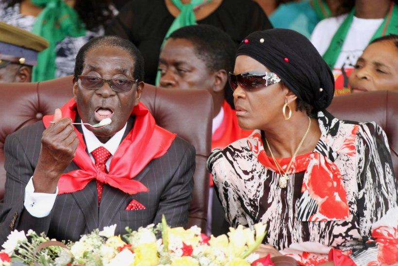 Zimbabwe diktaator nautis sünnipäeval elevandiliha