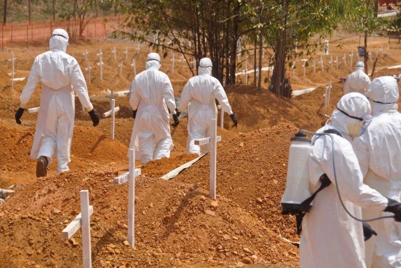 Piirideta Arstid: maailm reageeris Ebola viirushaiguse epideemiale liiga aeglaselt