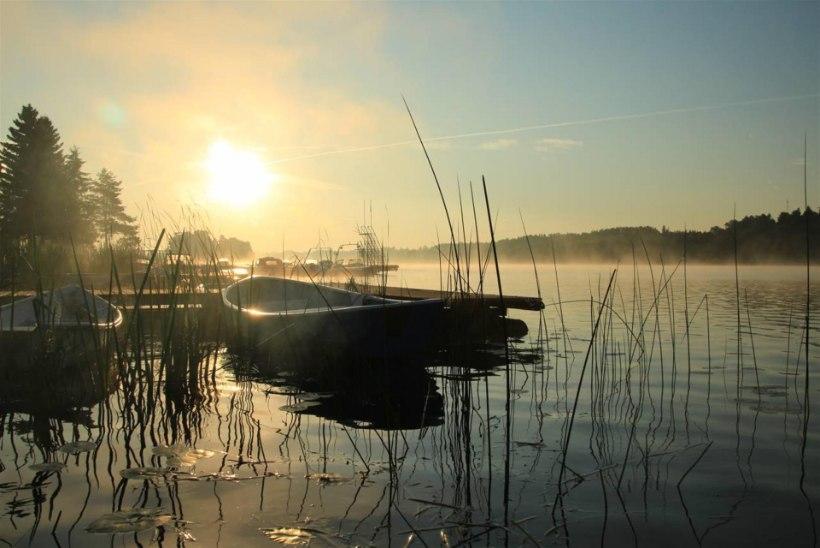 Eesti jõgede-järvede seisukord on üldjoontes rahuldav