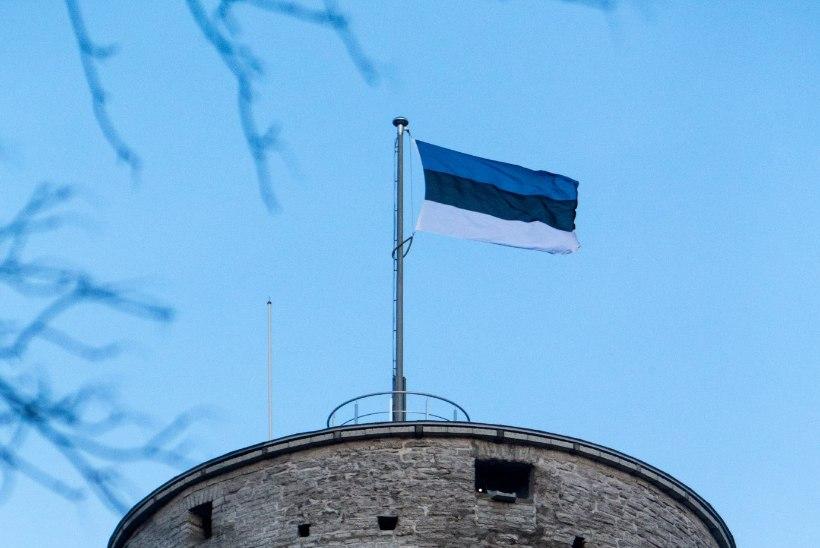 Pika Hermanni lippudele kulus 741 eurot