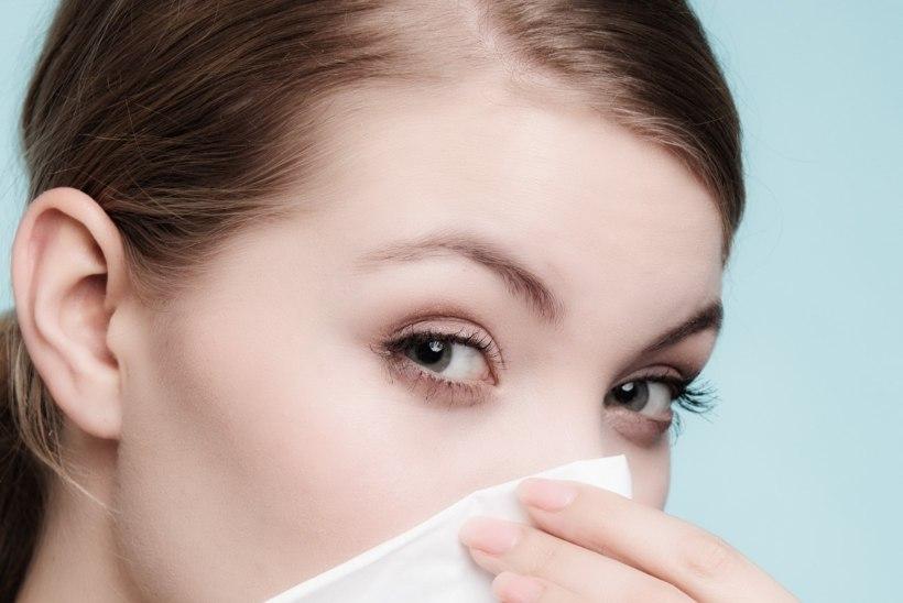 Allergikud, tähelepanu! Õietolmuperiood on alanud!