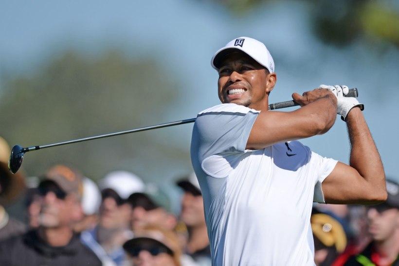"""KÕLAKAS: Tiger Woodsi """"vigastuspaus"""" on tegelikult dopingukeeld"""